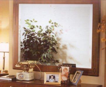 Зеркало в раме 419 GER